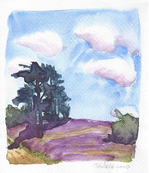 Ein Feld lila blühender Heide wird links eingefasst von einer Gruppe Nadelbäume und dahinter Gebüsch und rechts einem kleinen Busch. Ein Weg schneidet in der linken unteren Ecke durch das Bild. Leichte Bewölkung