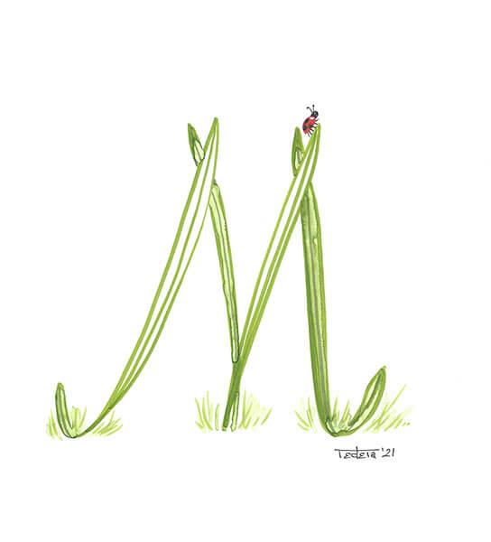 """mehrere lange, schlanke Blätter, die direkt aus dem Gras sprießen, formen den Buchstaben """"M"""". Auf der Spitze eines dieser Blätter ist rechts oben ein kleiner Marienkäfer zu sehen."""